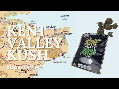 Kent Valley Kush Strain Review