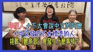 這次應觀眾要求,Lisa挑戰了 「吃吃的愛」裡面小S的「鯉魚歌」但是Lisa一個人挑戰覺得太無聊了,所以Lisa就請了,Lisa的阿嬤 跟 Lisa家照顧阿嬤的印傭一起來挑戰這首「鯉魚歌」。這首「鯉魚歌」被我們3個人挑戰到都不像「鯉魚歌」了!XD這次挑戰這首「鯉魚歌」純粹就是博君一笑,請原諒我們發音不標準!(笑)「鯉魚歌」歌詞:紅鯉魚與你你與綠鯉魚紅鯉魚與綠鯉魚與你與驢紅鯉魚與你你與綠鯉魚紅鯉魚與綠鯉魚與你與驢Come on everybody跟上來 1 21 2 3 41 2 3 4紅鯉魚與綠鯉魚與驢紅鯉魚與綠鯉魚與驢紅鯉魚與綠鯉魚與你與驢紅鯉魚與綠鯉魚與驢紅鯉魚與綠鯉魚與驢紅鯉魚與綠鯉魚與你與驢於情於理鯉魚不能與驢同居於情於理鯉魚不能與驢同居Come on 什麼東西阿 !-----------------------------【6 Yingwei快樂腦學校/獲得快樂的秘密】:https://goo.gl/pGfTmM【揭開YouTube賺錢的秘密】:http://goo.gl/MlulFC追蹤Lisa:♥︎ WaWa TV Facebook:https://www.facebook.com/WaWaTV888/♥︎ Instagram:https://www.instagram.com/wawa_tv/♥︎ 聯絡方式: wawatv888@gmail.com-----------------------------WaWa TV 其他的影片:恋/星野源 TBS系火曜ドラマ「逃げるは恥だが役に立つ」主題歌(Piano/Flute Covered by Lisa) |日劇 「逃避雖可恥但有用」電視主題曲「恋」星野源 +Kakki舞!!:https://youtu.be/KhzHbvKaRMw『PPAP』日本最新流行洗腦歌!(Pen Pineapple Apple Pen/ペンパイナッポーアッポーペンやってみた/筆鳳梨蘋果筆):https://youtu.be/63f0VRMsYM4台灣人的中文發音真的不標準嗎?:https://youtu.be/NrkubbFeu3M[台語教學] 13種水果的台語單詞 Part 2:https://youtu.be/qdNUbrz8XuM[台語教學] 12種水果的台語單詞 Part 1:https://youtu.be/kAg2HjoF2fU台語數字的兩種唸法| Two different way to say number in Taiwanese:https://youtu.be/FzuR91Z3xsI康康舞曲+大腿舞:挑戰單手玩鋼琴塊2(別踩白塊兒2)|Piano Tiles 2 Don't Tap The White Tile 2 play with one hand: https://youtu.be/Q9EEnQ5lhC0-----------------------------❤️Lisa愛看 YouTuber❤️6 Yingwei TV / 快樂姊Ryuuu TV / 學日文看日本 Sanyuan_JAPAN 三原慧悟阿兜仔不教美語kobasolo蔡阿嘎TGOP (This Group Of People)這群人馬叔叔 UNCLE MAStopkiddinstudio頑GAMEAlanChannel / 阿倫頻道ShenLimTV噪咖EBCbuzz미라 Mira's GardenMumu MusicTVMaoMao TV魚乾靠杯星球 fun planet阿滴英文... and more!-----------------------------