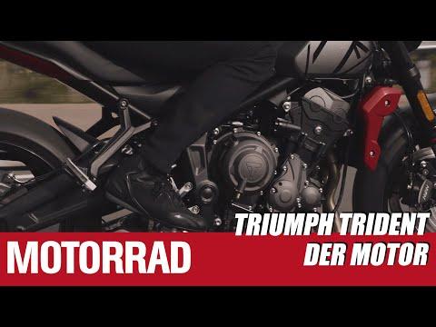 Triumph Trident 660 - Teil 2: Der Motor