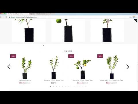 How to Order a Fruit Salad Tree