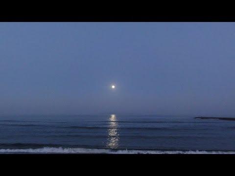 【動画フェス】沈みかける中秋の名月