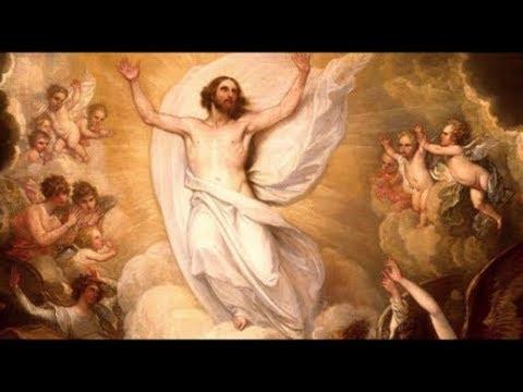 Livro do Êxodo (Forma breve - Êx 20,1-3.7-8.12-17)