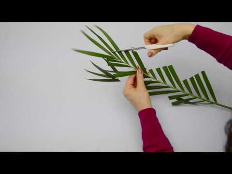 Ikebana Tips By Junko #16: More Fun Modifying Leaves