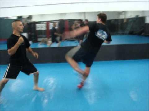 Jiu jitsu VS Taekwondo