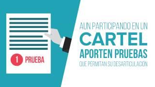 Programa de Clemencia, CNMC