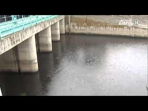 Hà Nội có nguy cơ ngập lụt do ảnh hưởng của bão số 3