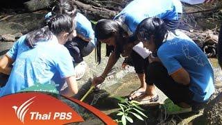 Nature Spy สายลับธรรมชาติ - หาดทรายสายน้ำพะงัน 2
