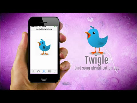 New Innovative Bird Field Guide App, Twigle, Is Now Available On App Store