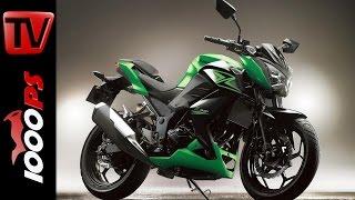 8. Kawasaki Z 300 2015 | Specs, Price, Release