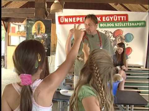 Rexpressz- Nyári tábor a Rex állatszigeten
