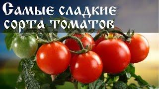 Сладкие сорта помидоров для открытого грунта
