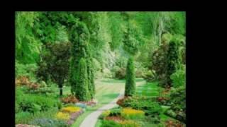 Elvis Presley~In The Garden
