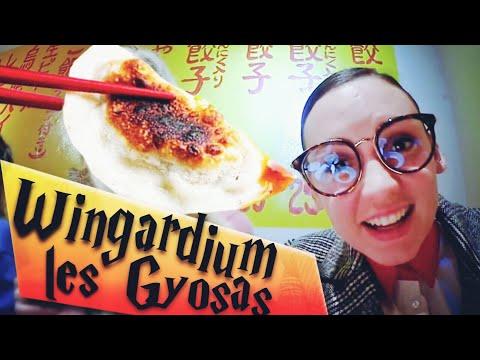 Wingardium les Gyozas ( Vlog Tokyo 1/2 )