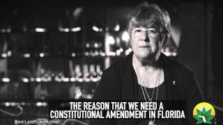 Regulate Florida - Karen Seeb Goldstein Vice Chairperson