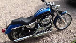 10. 2004 Harley Davidson Sportster 1200 Custom idle and rev