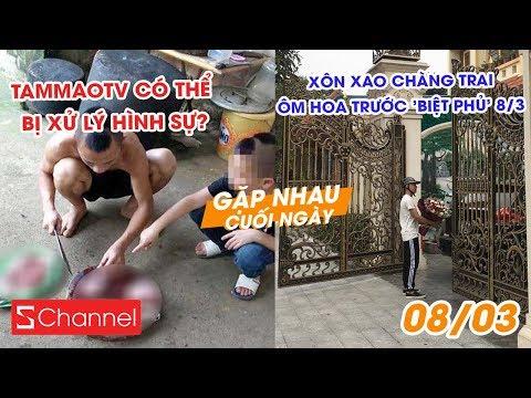 TamMaoTV có thể bị xử lý hình sự? | Xôn xao chàng trai ôm hoa trước 'biệt phủ' 8/3 - GNCN 8/3 - Thời lượng: 9 phút, 15 giây.