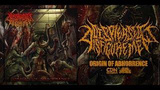 Album: Origin of Abhorrence Released: Jun 9, 2017 Genre: Brutal Death Metal Location: Middelburg, South Africa Facebook:...