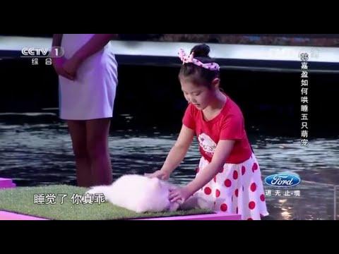 Маленькая китаянка гипнотизирует животных