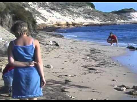 su pallosu, dove i gatti scendono in spiaggia