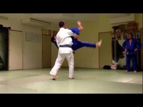 EFJJSD – préparation coupe de France 2013 de jujitsu – démonstration technique Yoann et Stéphane