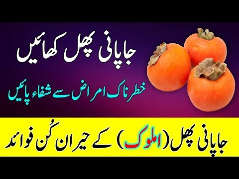 Japani Phal (Amlok) Ke Fayde || Health Benefits Of Persimmon In Urdu/Hindi