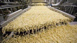 Video World Amazing Automatic French Fries Production Line Modern Food Processing Technology MP3, 3GP, MP4, WEBM, AVI, FLV Januari 2019