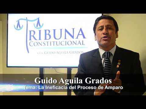 Programa 30 - La Ineficacia del Proceso de Amparo - Tribuna Constitucional - Guido Aguila