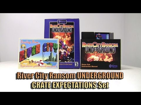 River City Ransom Underground PC