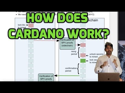 How Does Cardano Work?