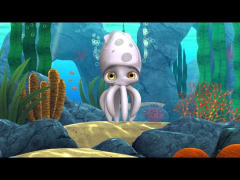 Video of Alphie the Squid