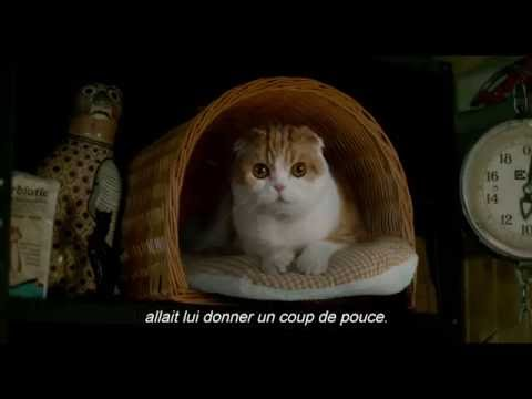 Nine Lives / Ma vie de chat (2016) - Trailer (French Subs)