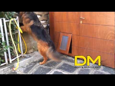 D.M.A Porte Basculanti per i vostri animali