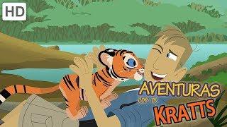Chris e Martin encontram um tarsier de olhos azuis com seus óculos noturnos. É ótimo criar uma criatura noturna! Agora você...