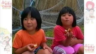 かあさん家(ち)のおからドーナツ