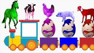 Video Pelajari Warna Dengan Telur Super dan Hewan Ternak | Nama Dan Suara Hewan Ternak | Tokek MP3, 3GP, MP4, WEBM, AVI, FLV Mei 2019
