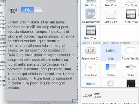 IPhone App Development - Switch & Text…