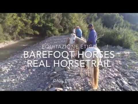 Cavalli scalzi condotti senza imboccatura impegnati in Real HorseTrail