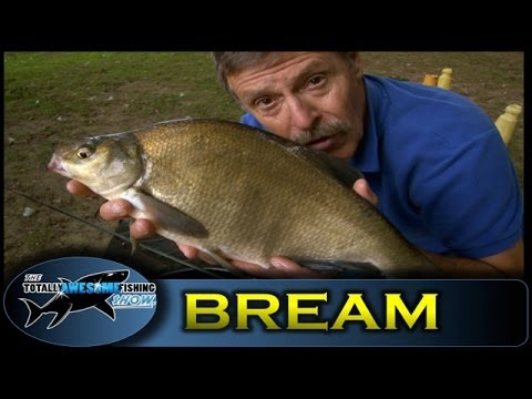 Feeder fishing for Bream – Totally Awesome Fishing Show