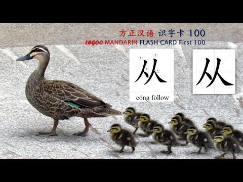 Origin of Chinese Characters - 0106 从 從 cóng follow; obey, follower, attendant - Learn Chinese with Flash Cards