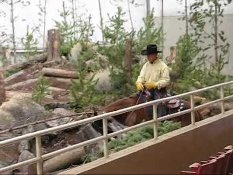 2009 Mountain Trail compeditor Bridleless Oregon Horse Center