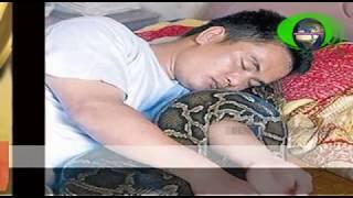 Video 9 Tahun Lalu, Ia Menyelamatkan Ular Python Kecil yang Sekarat, Sang Python pun Membalas Budi MP3, 3GP, MP4, WEBM, AVI, FLV Agustus 2018