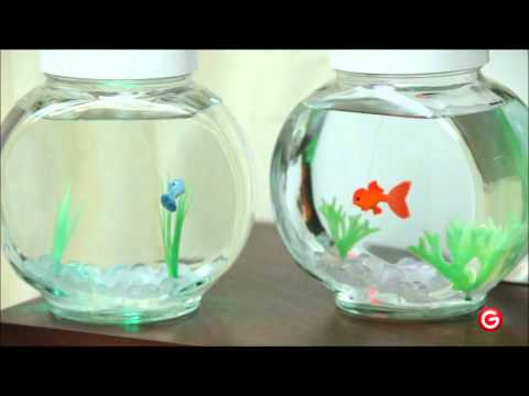 Fincredibles - Electronic Pet Fish