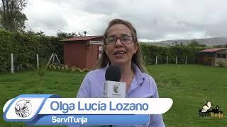 Invitación Jornada de Recolección Residuos Posconsumo en Tunja