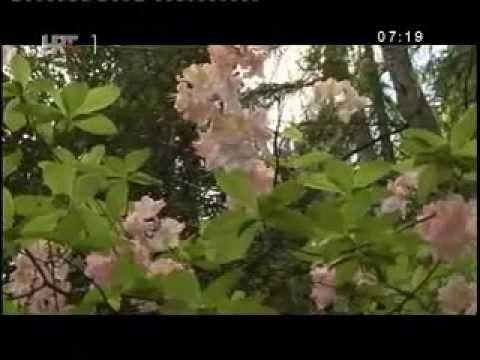 """Projekt """"Nature No.1."""" u sklopu kojeg je obnovljen Arboretum LIsičine"""