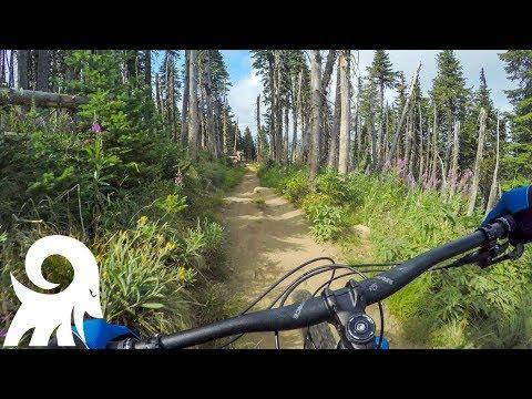Trail 140 at Mount Spokane HAS IT ALL!!!