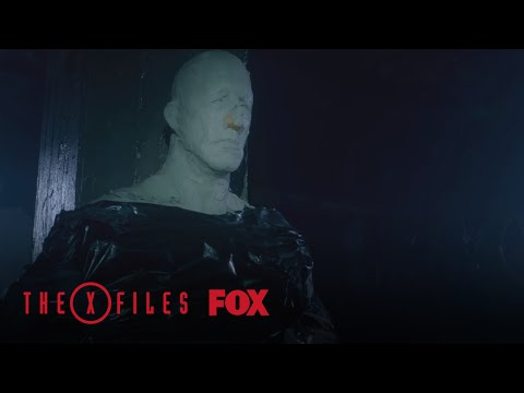 Scully And Mulder Find A Man In Hiding | Season 10 Ep. 4 | THE X-FILES
