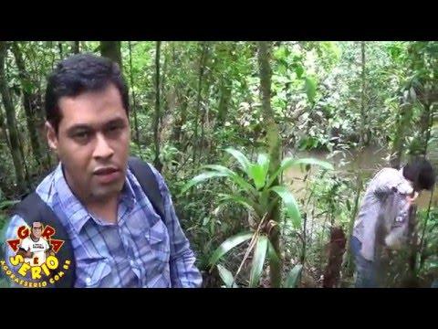 Pedro Ângelo x Transposição do Rio Juquiá para Represa do Guarapiranga