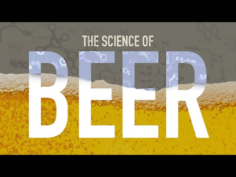 How is Beer Made?