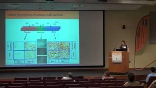 Integrating Mechanical Cues And Biomolecular Patterns For Tendon-Bone Junction Repair