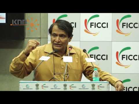 Need to bring synergy among various segments to help realise country's potential: Prabhu
